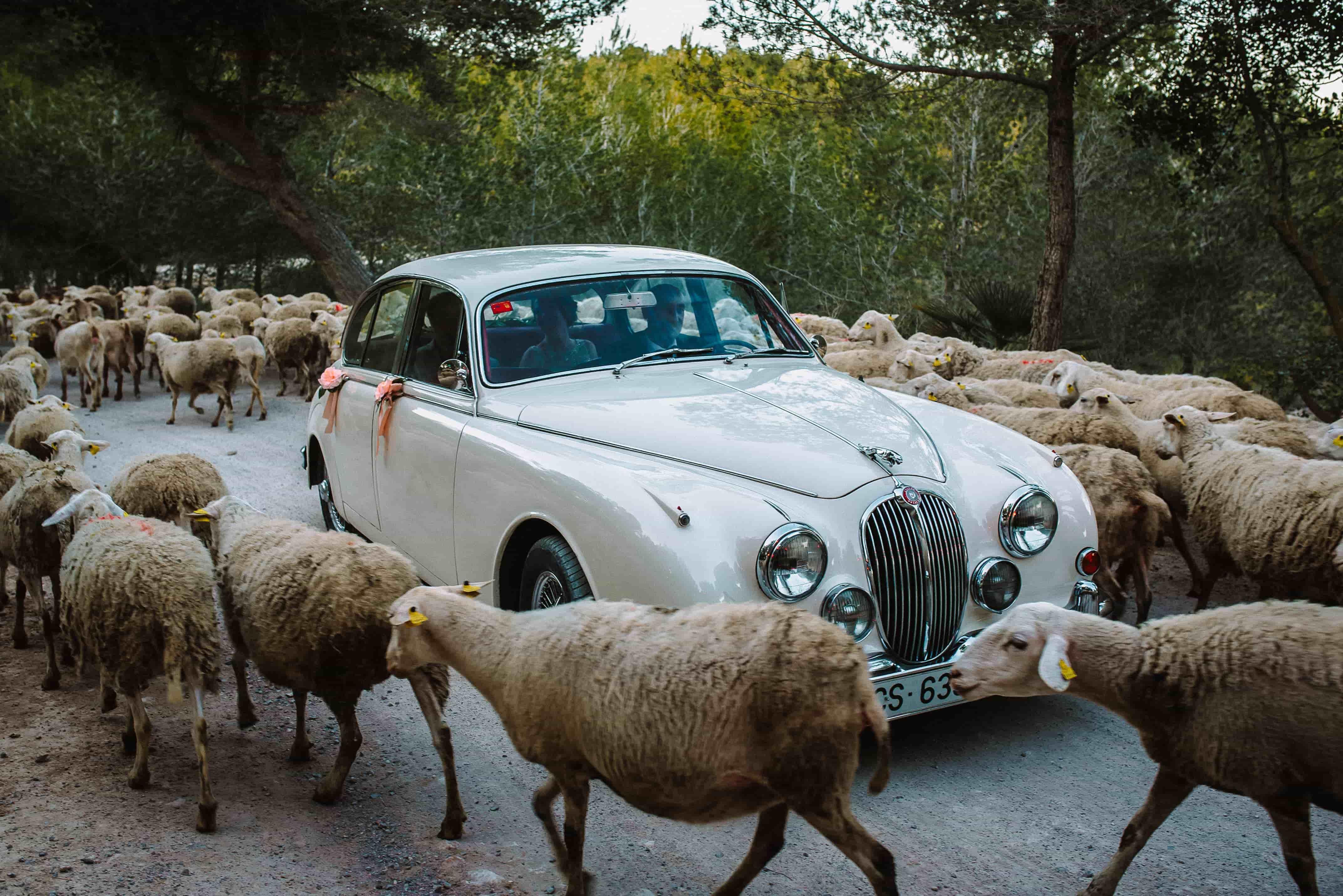 Luxury-Weddings-Barcelona-Barcelona-Wedding-Planner-40-min-min